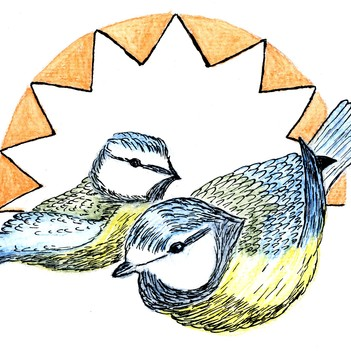 early-birds-logo